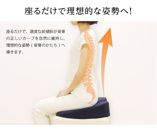 座るだけで適度な傾斜が背骨の正しいカーブを自然に維持し理想的な背骨のかたちに導きます