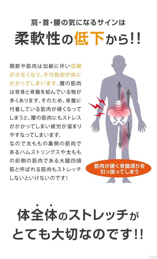 肩・首・腰の気になるサインは柔軟性の低下から、体全体のストレッチが大切です
