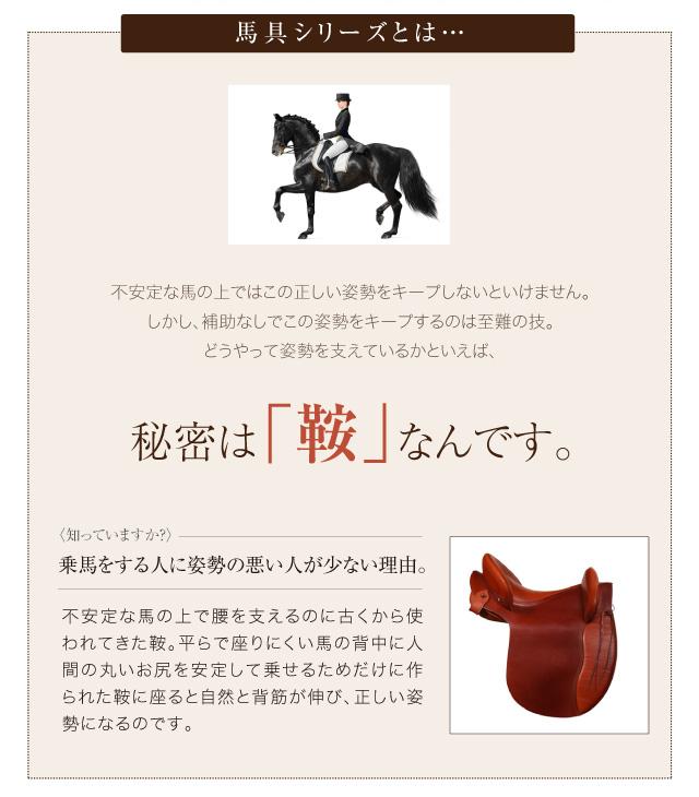 馬の鞍の安定構造をマットに再現する事で、良い姿勢で・長時間・安定して・楽に座ることができる