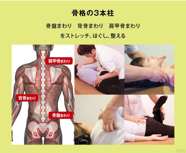 骨盤周り・背骨周り・背甲骨まわりをストレッチしほぐして整える