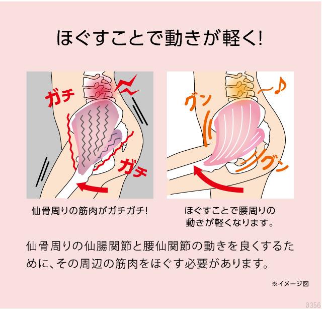 仙骨周辺の筋肉をほぐすことで腰周りの動きが軽くなります。><br> <img border=